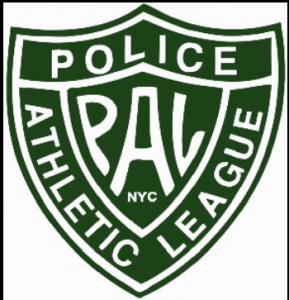 PAL Fair Use Logo